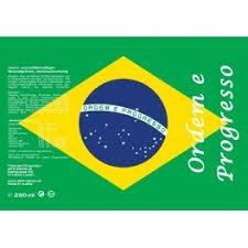 BRASILIEN Energy Drink 250 ml