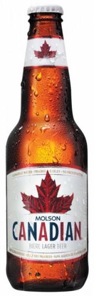 Molson Canadian Bier 330 ml / 5 % Kanada